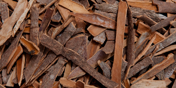 cassia bark description